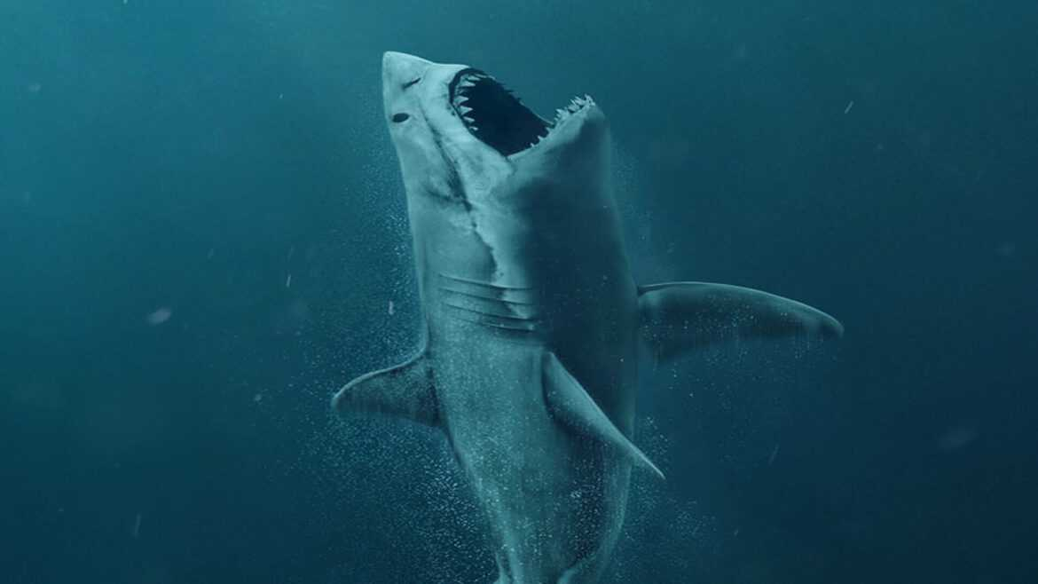 megalodon shark movie - HD 1500×844
